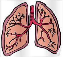 Funny cartoon lungs - Respiratory system Poster