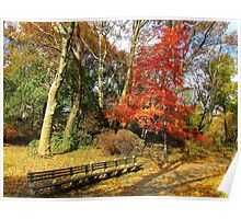Central Park in Autumn, New York City  Poster