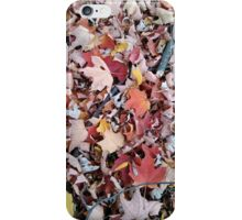 Autumn Leaves 4 iPhone Case/Skin