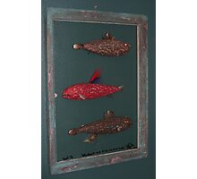 """Windows are Fish to the Sole 3 of 13 by Fred Weiler. 23"""" x 32"""" $300.00 for original Photographic Print"""