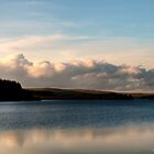 Alwen Reservoir  by David J Knight