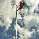 Welsh Flag by Emma Williams