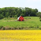 Red Barn in Bollinger County, in Southeast, Missouri by SusieG