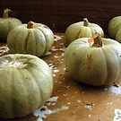 On the shelf: sad pumpkins by Steve
