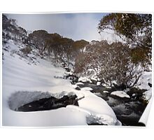 Guthega Back Country Snow Shoeing Poster