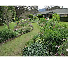 Grass Path (South Coast, NSW) Photographic Print
