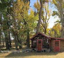 Cabin in the Foothills by marilyn diaz