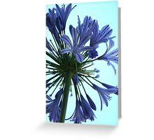 Designer Bloom Greeting Card