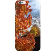 Sixth Street Embankment, Autumn Colors, Abandoned Pennsylvania Railroad Embankment, Jersey City, New Jersey  iPhone Case/Skin