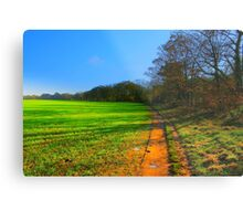 The Teesdale Way Trail, Low Coniscliffe, England. November Sun. Metal Print