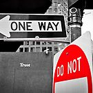 One Way Do Not Trust by RonSparks