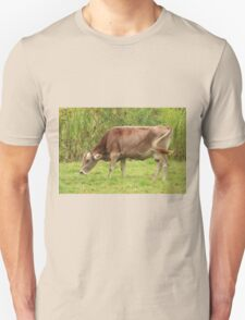 Brown Cow Grazing Unisex T-Shirt