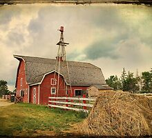 Heritage Village Barn by Teresa Zieba