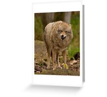 She Aint Smiling Greeting Card