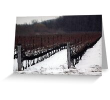 Vineyard Greeting Card
