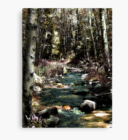 In the West End of the Shire -  Canvas Print