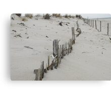 lines in dune Canvas Print