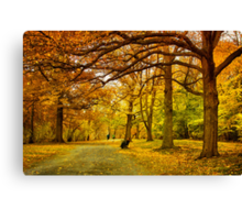 Autumn marathon Canvas Print