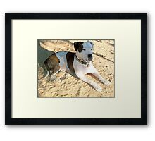 Who is Freckles Watching NOW Framed Print