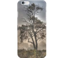 Morning Mist and Elder Tree iPhone Case/Skin