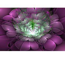 3D Blooms - Bouquet Photographic Print