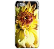 Yellow Dahlia iPhone Case iPhone Case/Skin