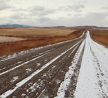 Dirt road by zumi