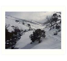 Guthega Back Country Snow Shoeing Art Print
