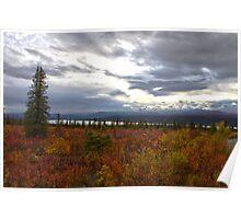 Alaska Tundra Poster