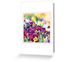 ~ colourful ~ Greeting Card