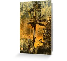 African Skies Greeting Card