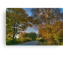 The Road to Autumn Canvas Print