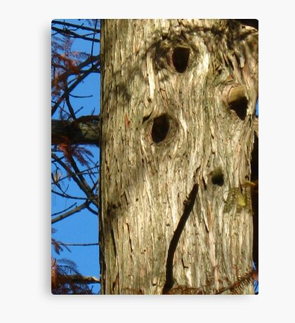Old Woodpecker Homes Canvas Print