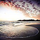 Sea Swirl by Jill Fisher