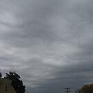 November Skies 4 by dge357