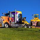 Heavy transport in light bright colour by flexigav