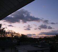 November Morning 2 by dge357