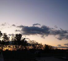 November Morning 7 by dge357
