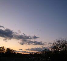 November Morning 8 by dge357
