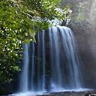 Russell Falls #1 - Tasmania by Karen Stackpole