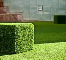 Cube by Ruben D. Mascaro