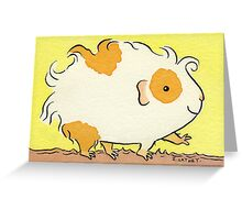 Curly Strutting Guinea-pig Greeting Card