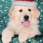 Christmas Puppy by Jenny Brice
