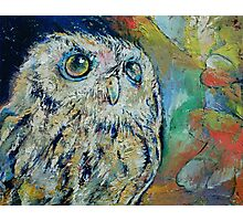 Owl Photographic Print