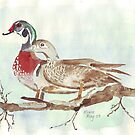 Carolinas (Wood Ducks) by Maree Clarkson