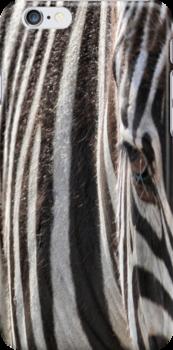 Zebra by Carla Jensen