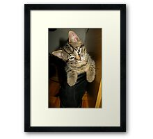 Puss in boot Framed Print