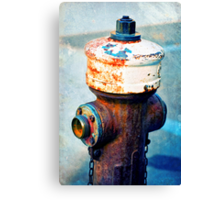 Weathered fire hydrant Canvas Print