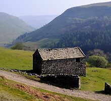 Old Barn, Swaledale - The Yorkshire Dales by Dave Lawrance