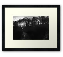 trees in light and silhouette, Graiguenamanagh, County Kilkenny, Ireland Framed Print